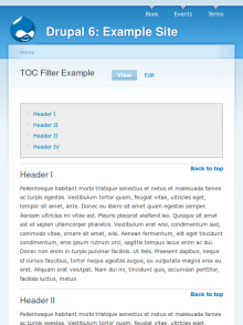 TOC filter example
