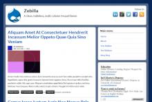 Zebilla theme screenshot