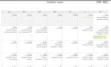 Example of monthly calendar