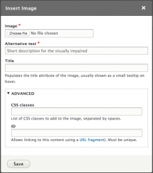 Editor Advanced Image
