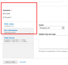 Entities edit form domain field widget.