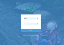 Custom login window