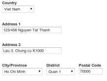 Viet Nam Address form