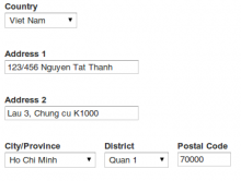 Viet Nam Address form