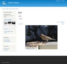 Album Photos D7: image view