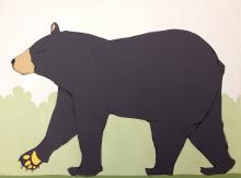 Bear Homepage