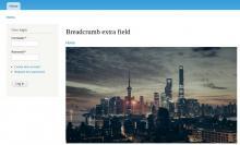 Breadcrumb extra field - Result examble