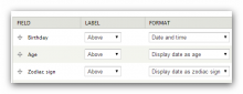 Screen capture of date field format settings for age and zodiac sign