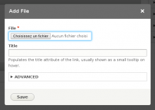 Full dialog with Editor Advanced link