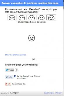 An image of what a Google Survey looks like on your page.