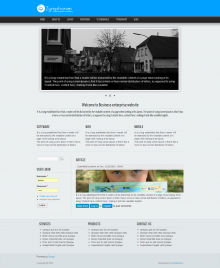 Business Enterprises Theme