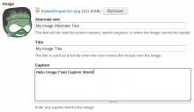 Screenshot of Image Field Caption for Drupal