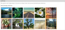 Screenshot of CAPTCHA provided by Image-Recognition CAPTCHA