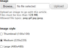 Screenshot showing the image style selector mechanism below an image field