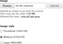 Screenshot showing the image style selector mechanism below an image field