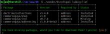 Drupal Console command