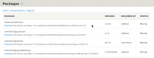 Packages page in the Drupal admin