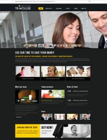 TB Mollise Screenshot Front-Page
