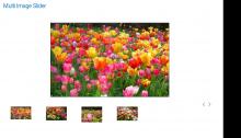 Multi Image Slider User