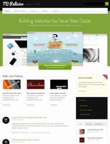 TB Palicico Theme Screenshot Homepage