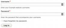 Initial login form