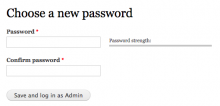 Form presented with Simple Password Reset enabled in brief mode.