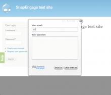 Screenshot of SnapEngage contact widget