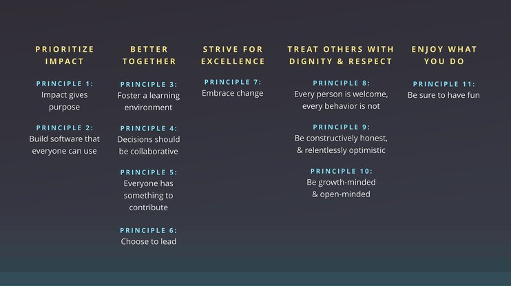 Values and principles alpha