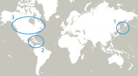Japan Is Missing On The Homepage Map Drupalorg - Japan map png